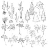 Vector Big Set of Sketch Trees and Plants. Stock Photography