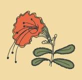Vector Bild einer Blume in der Weinleseart Stockbilder