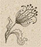 Vector Bild einer Blume in der Weinleseart Stockfoto