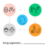 Vector biology icon set  on white background with colorful circles. Stock Photo