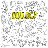 Vector biology science doodles. Back to school illustration. Stock Photography