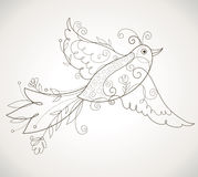 Vector bird Stock Images