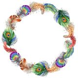 Vector bird feather wreath from wing. Stock Image