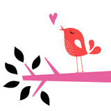 Vector  bird love card Stock Image