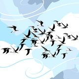 Vector Birds. Vector drawing of animal life. This is not a trace, but a digital drawing based on my sketches Stock Image