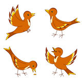 Vector birds. Set of four stylized birds. Vector EPS8 Stock Photos