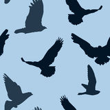 Vector birds background seamless pattern Stock Image