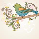 Vector birds Stock Images