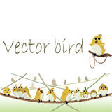 Vector birds. Vector illustration of a bird sitting on a branch Royalty Free Stock Images