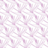 Vector Birds of Paradise Flowers Seamless Pattern Royalty Free Stock Images