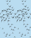 Vector birds seamless pattern with graphic elements for printing on fabric Stock Photos