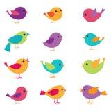 Vector birds set stock illustration