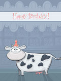 Vector Birthday card with funny cow Stock Image