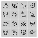 Vector black agriculture and farming icons set Royalty Free Stock Photography