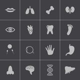 Vector black  anatomy  icons set Stock Photo