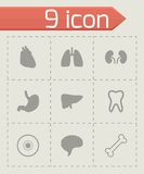 Vector black anatomy icons set Royalty Free Stock Images