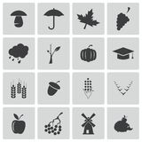 Vector black autumn icons set Stock Photos