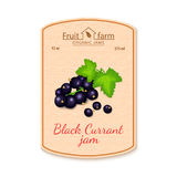 Vector black currant jam lable. Composition of ripe fruits. Design of a sticker for a jar with black currant jam, fruit Royalty Free Stock Photos