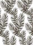 Vector Black Seamless Pattern with Drawn Fern Leaves Stock Images