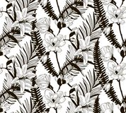 Vector Seamless Pattern with Drawn Flowers and Leaves. Vector Black Decorative Seamless Background Pattern with Drawn Flowers and Leaves, Cherry Blossom, Fern Royalty Free Stock Image