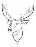 Vector black deer head Stock Images