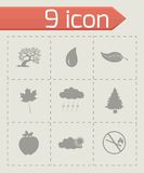 Vector black eco icons set Royalty Free Stock Images