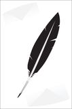 Vector black feather Royalty Free Stock Image