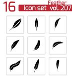 Vector black feather icons set Stock Images