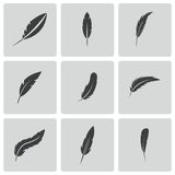 Vector black feather icons set Royalty Free Stock Images