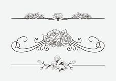 Vector Black Floral Dividers with Flowers and Swirls vector illustration