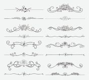 Vector Black Floral Dividers with Flowers and Swirls. Black Hand Drawn Delicate Floristic Dividers, Line Borders with Branches, Plants, Flowers, Swirls and royalty free illustration
