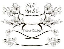 Vector Black Floral Text Dividers. Flower Design Elements. Black Hand Drawn Floral Text Dividers, Line Borders with Branches, Herbs, Plants and Flowers Royalty Free Stock Photography