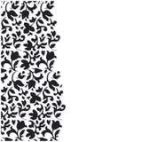 Vector Black Flower Background Stock Photo