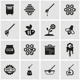 Vector black honey icon set Stock Images