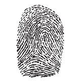 Vector black isolated fingerprint. On white background Stock Photos