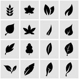 Vector black leaf icon set Royalty Free Stock Photo