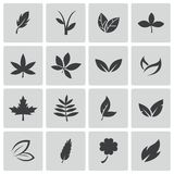 Vector black leaf icons set. This is file of EPS10 format Royalty Free Stock Images