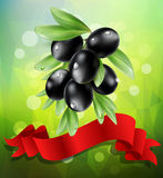 Vector black  olive branch with red ribbon on a green background Royalty Free Stock Photos
