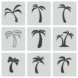 Vector black palm icons set Royalty Free Stock Photography