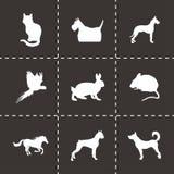 Vector black pet icons set Royalty Free Stock Image
