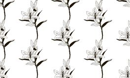 Vector Black Seamless Pattern with Drawn Lilies. Vector Black Decorative Seamless Background Pattern with Drawn Flowers, Lilies. Hand Drawn. Vector Illustration Royalty Free Stock Photo