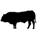 Vector black silhouette of the cow Royalty Free Stock Images