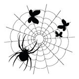 Vector black spider, butterflies and web silhouette Royalty Free Stock Image