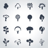 Vector black trees icon set Stock Photography