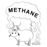 Vector Black and White Drawing or Illustration of Cow Producing Methane Stock Image
