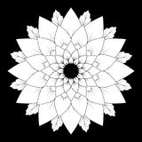 Vector black and white floral natural mandala background - adult coloring book page Royalty Free Stock Image