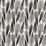 Vector Black And White Seamless Bird Feather Jumble Pattern. Background Royalty Free Stock Image