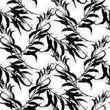 Vector black and white seamless pattern with leaves Stock Image