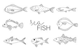 Vector black and white set of fish vector illustration
