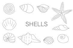 Vector black and white set of sea shells stock illustration